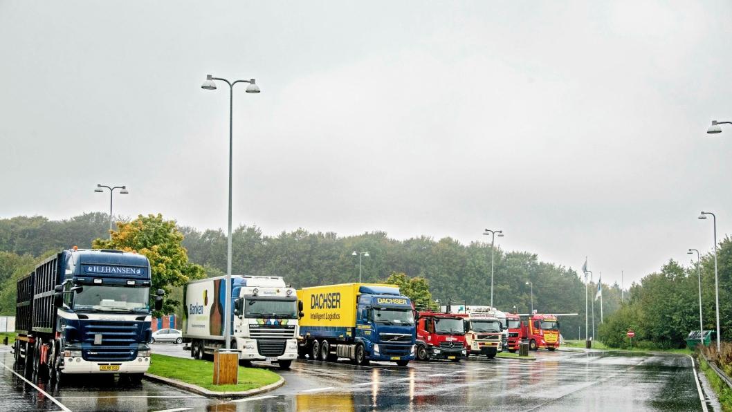 Lastebiler på en dansk rasteplass. Kanskje venter de på oppdrag? Kanskje kunne de allerede ha fått det gjennom Wuxus?