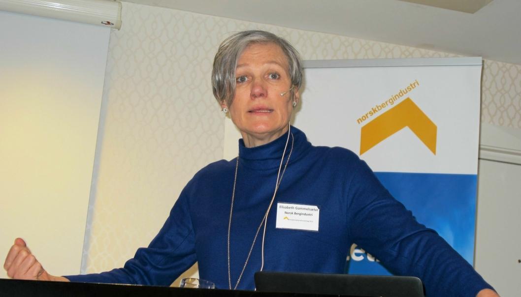 - Vi representerer en bransjen som er opptatt av å formidle og lære, sier generalsekretær Elisabeth Gammelsæter.