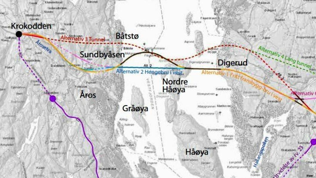 Statens vegvesen går for at riksvei 23 skal krysse Oslofjorden via bruer over Nordre Håøya. Se hele illustrasjonen og fyldigere begrunnelse for vurderingene ved å trykke på lenken i artikkelen.