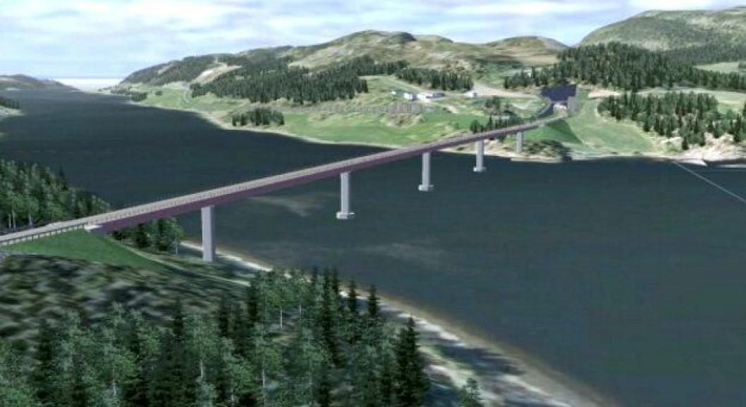 Hvem som skal få bygge fv. 17 Beitstadsundbrua i Trøndelag er blitt politikk.