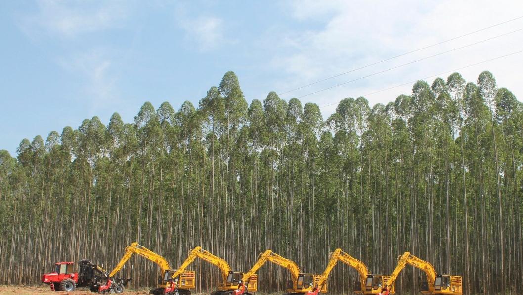 GRAVEMASKINER: Flere Komatsu PC200 gravemaskiner utstyrt for hogst inngår i leveransen på 150 maskiner.
