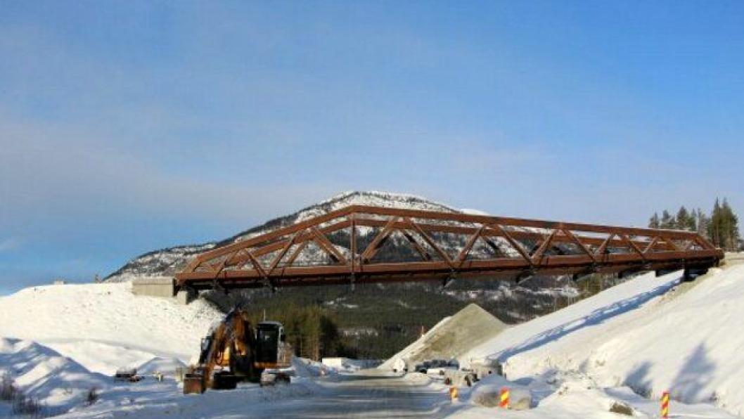 E6-prosjektet ønsker å gjenoppbygge Perkolo bru slik som den opprinnelige brua. Bildet er tatt 4. februar 2016, to uker før brua kollapset på grunn av en prosjekteringsfeil.