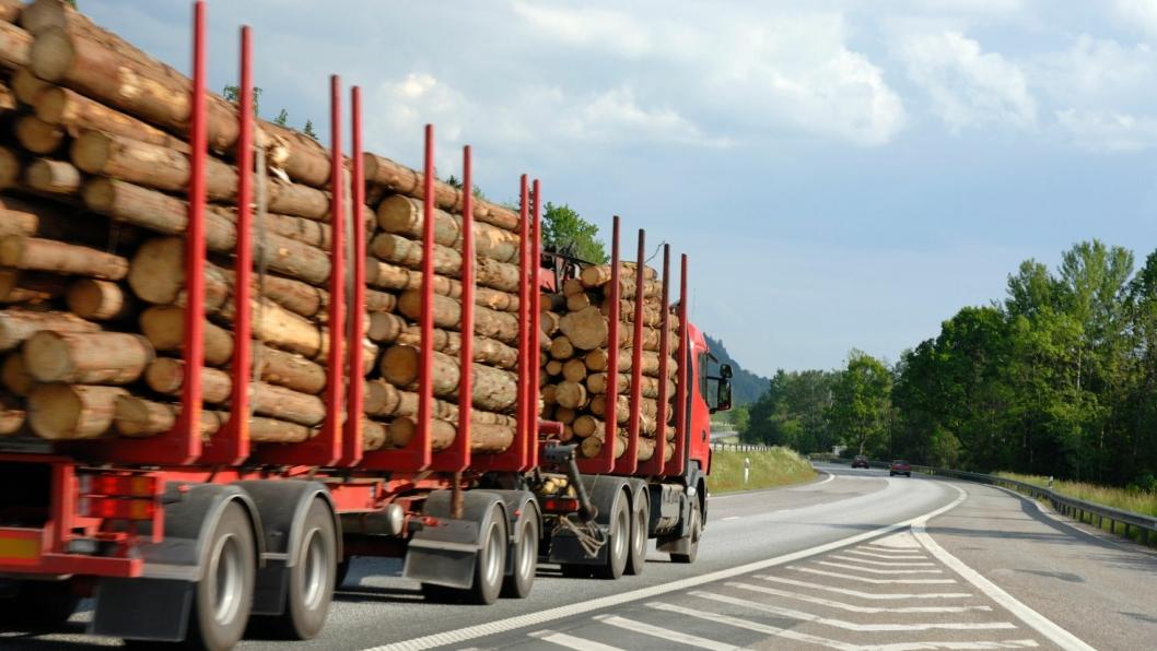 Svært få tømmerbiler går i 164 km/t i oppoverbakker. Det har svensk politi innsett.