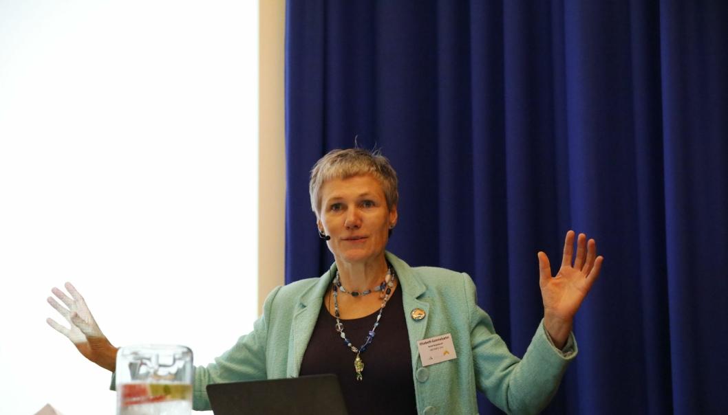 KRITISK: Generalsekretær Elisabeth Gammelsæter i NOrsk Bergindustri mener det er for mye politisk snakk og for lite handling fra den norske regjeringen.