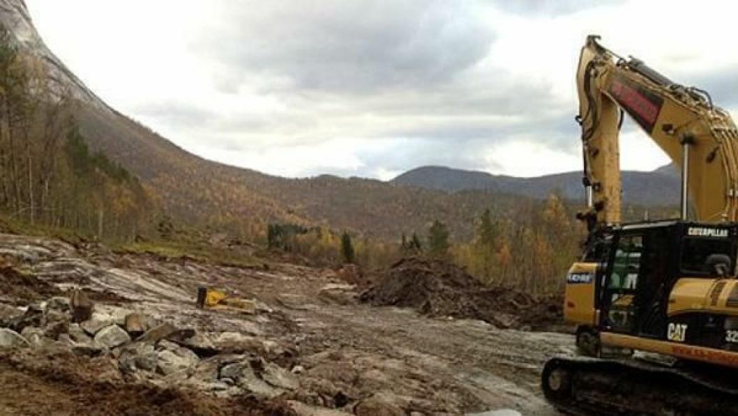 Frem mot jul skal en strekning på rundt tre kilometer renskes for skog, for å gi plass til ny vei.