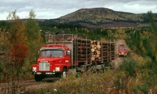 Scania LS 141 6x2 fra 1979.: Utviklet på 70-tallet da snutebilen utgjorde 50% av Scanias produksjon.