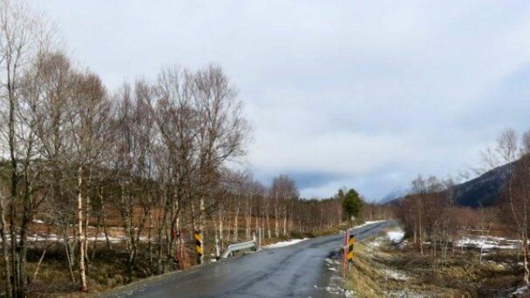 Tre bruer i Steigen skal byttes ut med nye kulverter. Brua over Snøselv (bildet) er først ut.