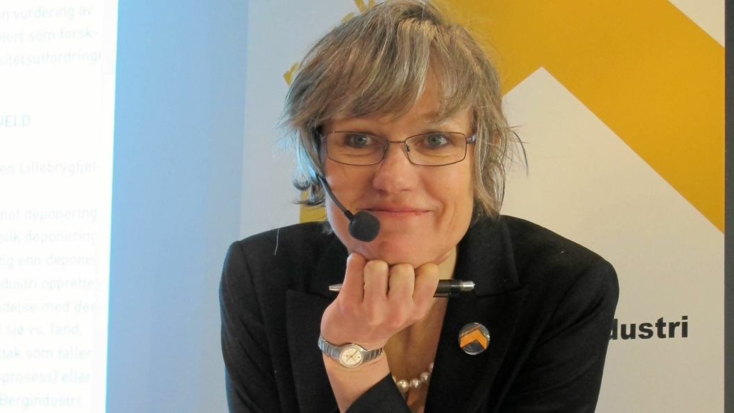 Elisabeth Gammelsæter går av som generalsekretær i Norsk Bergindustri men fortsetter videre i sekretariatet som spesialrådgiver.