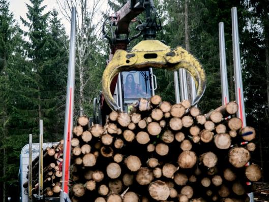 ALDRI FØR: Tømmerkran hadde Kristin Leithe aldri kjørt før. Også det går raskere og raskere.