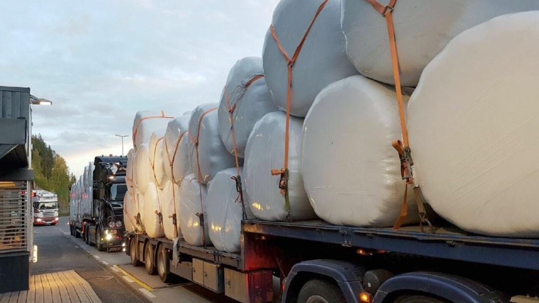 Inspektørene var meget godt fornøyd med denne lastsikringen ved en tungbilkontroll på E16 i Valdres.
