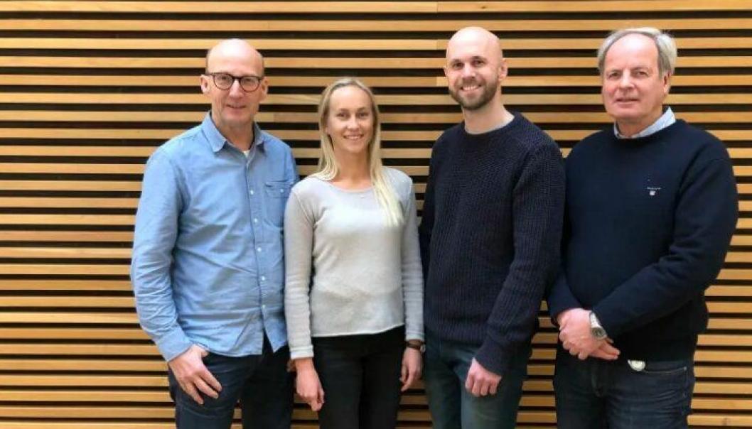 Disse norconsulterne står bak idéstudien. Fra venstre: Einar Gert Neslein, Hanne Kristensen Grøn, Henning Leifsen og Harald Hesselberg.