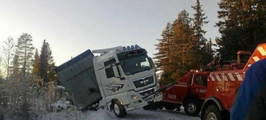 - Norsk transportnæring i fritt fall
