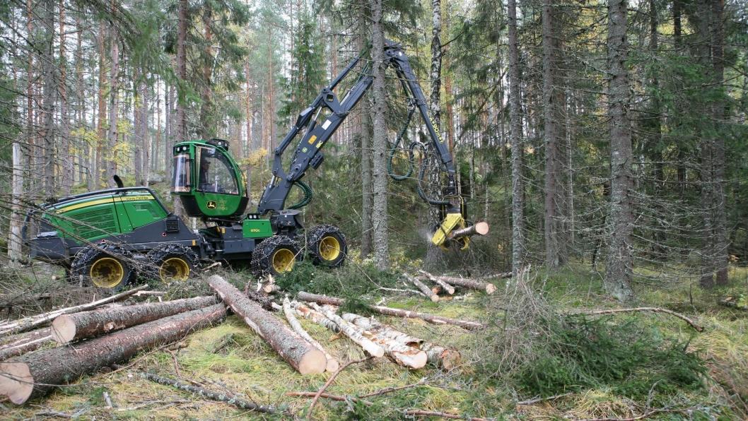 I Hedmark ble det ifjor innmålt 3,0 millioner kubikkmeter. Det utgjør 27% av den totale avvirkningen.