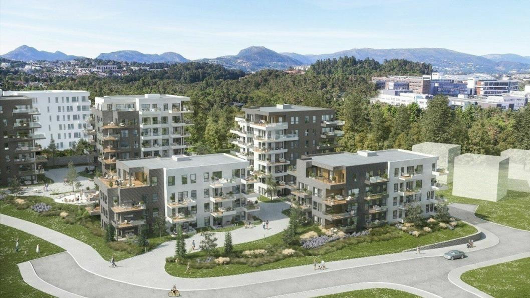 Prosjektet består av fem bygninger, som er knyttet sammen med felles parkeringsanlegg.