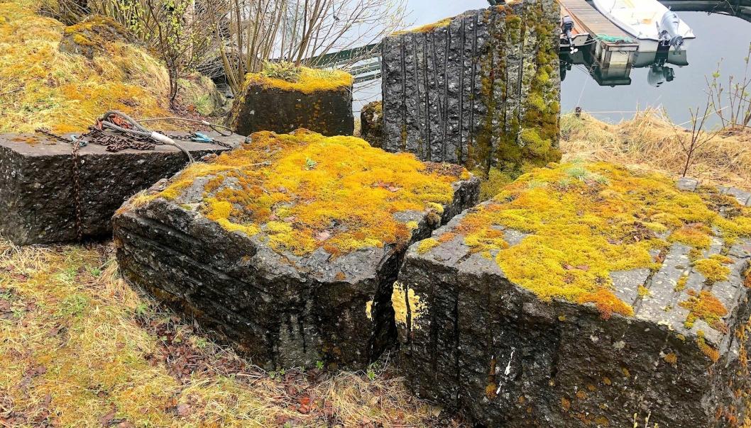 Ellingard fant fem brukbare steinblokker med Solvågstein i et nedlagt steinbrudd i bygda Festvåg utenfor Bodø.