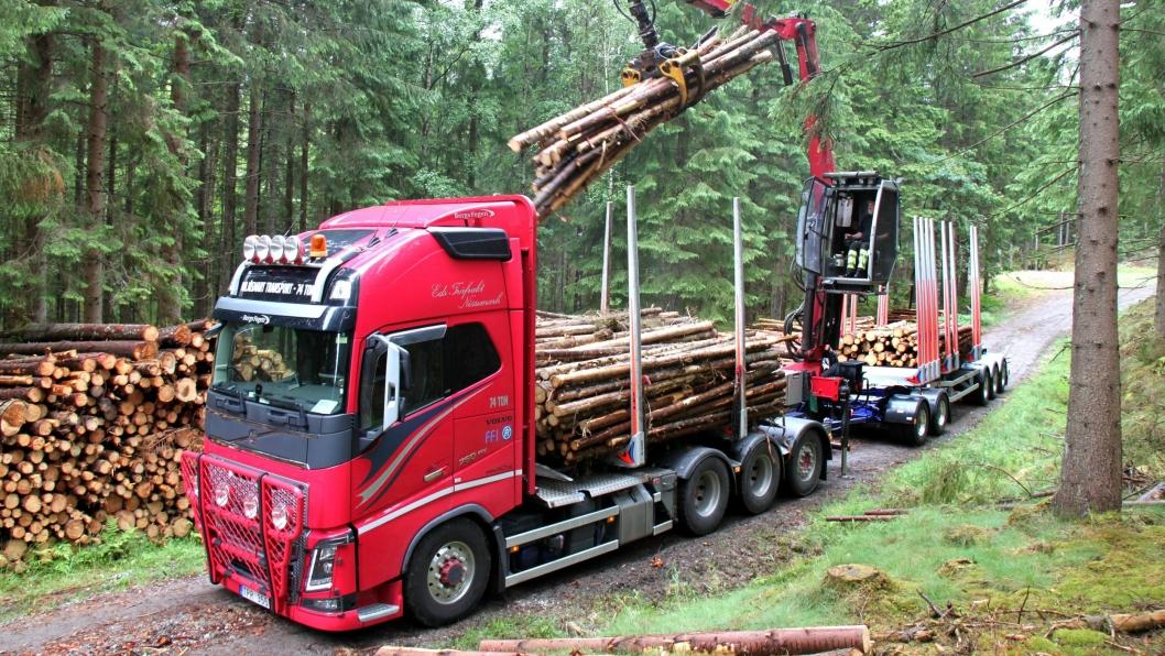 Statens vegvesen forbereder en prøveordning for tømmervogntog med opptil 74 tonn totalvekt. Bildet viser et 74 tonns svensk tømmervogntog.