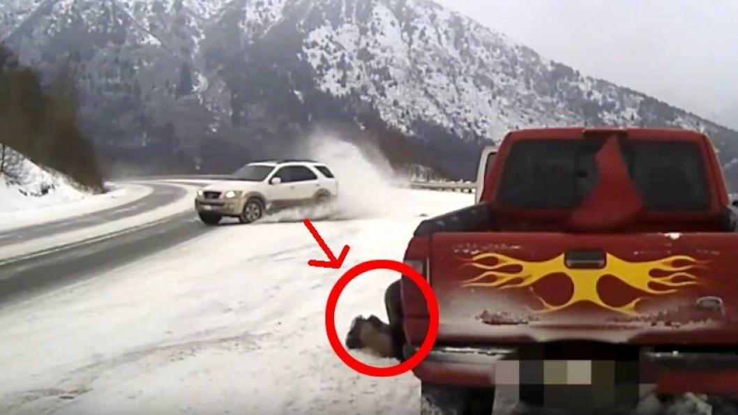 Alaska sladd bilberging