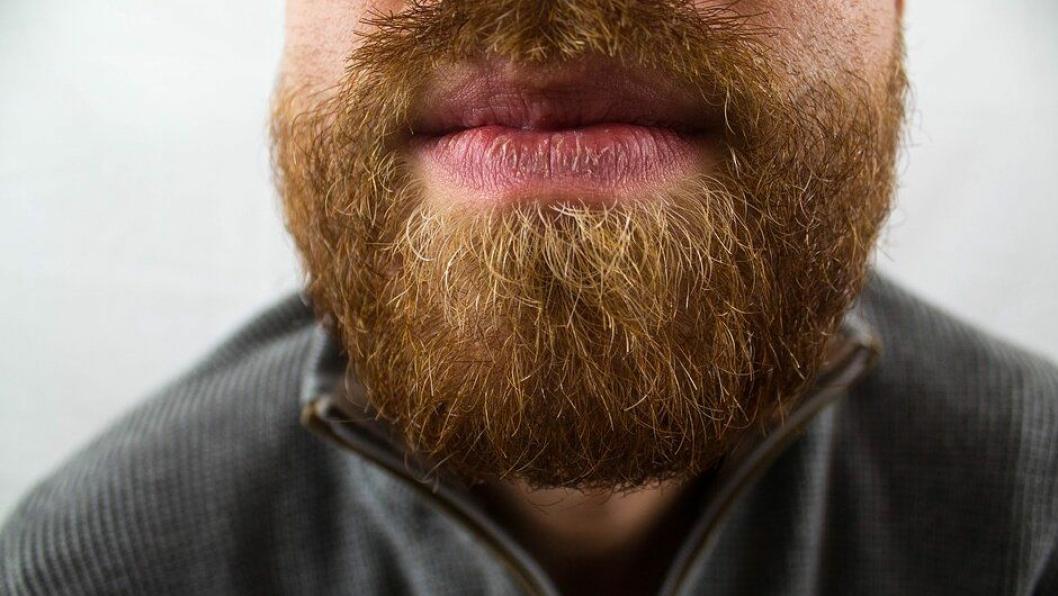 Illustrasjonsbilde av skjegg. Det var ikke denne skjeggete mannen som kjørte i Voss.