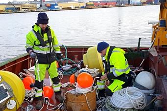 Miljøovervåker utfylling av Drammen Havn