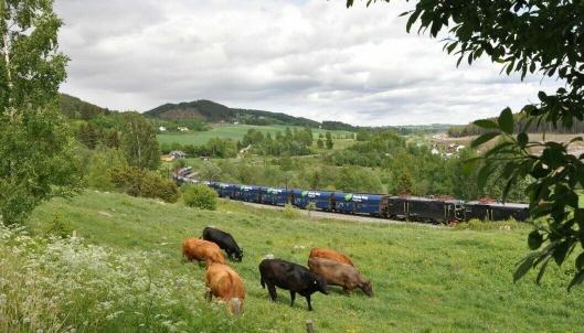 Flis-transport på bane er et viktig bidrag for å nå klima- og miljømålene.