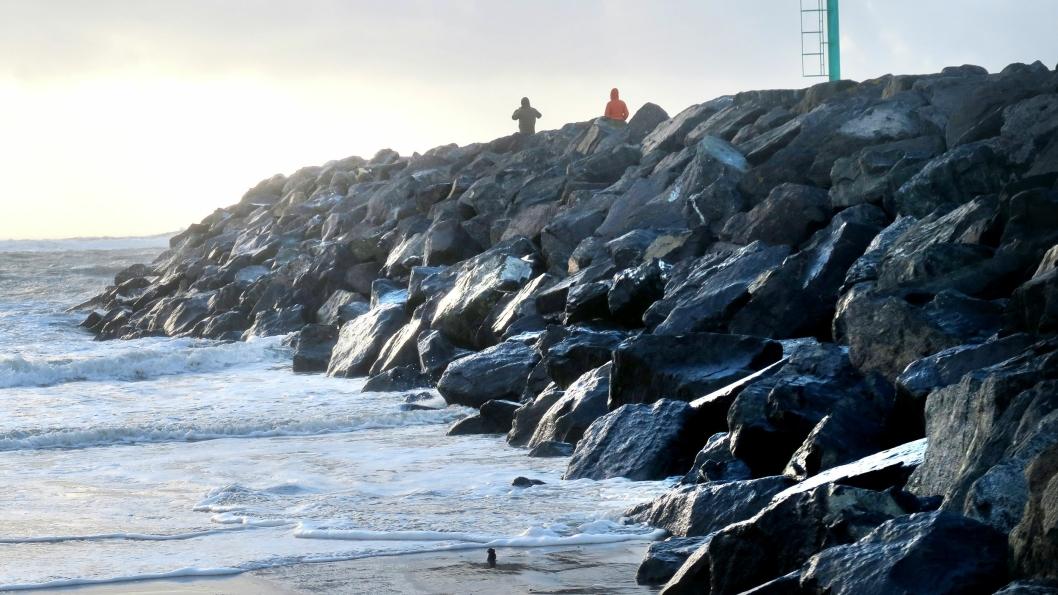 NCCs Armour Stone består av bergarten hyperitt og brukes blant annet til å beskytte kyst mot bølger.