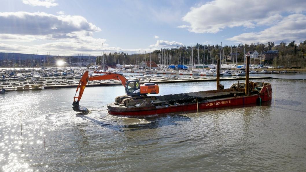 MUDRING: Viken Sjøtjeneste ble etablert for ni år siden og har tre gravere og lektere som bare jobber i sjøen. Her i Solvik Båtforening i Bærum mudrer de for å gjøre plass til en ny brygge.