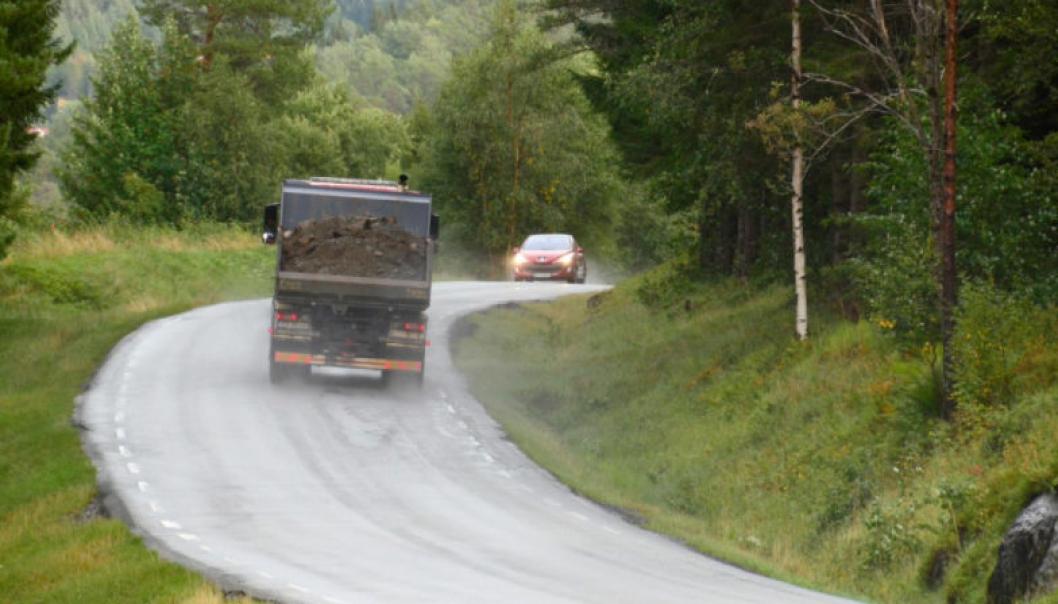 Dagens E39 Leirvika-Renndalen er smal, har flere krappe svinger og enkelte partier med svært dårlig sikt. Den nye vegen skal bygges med en bredde på 9 meter og får en langt bedre standard med bedre framkommelighet og økt trafikksikkerhet for både privat- og næringstrafikken.