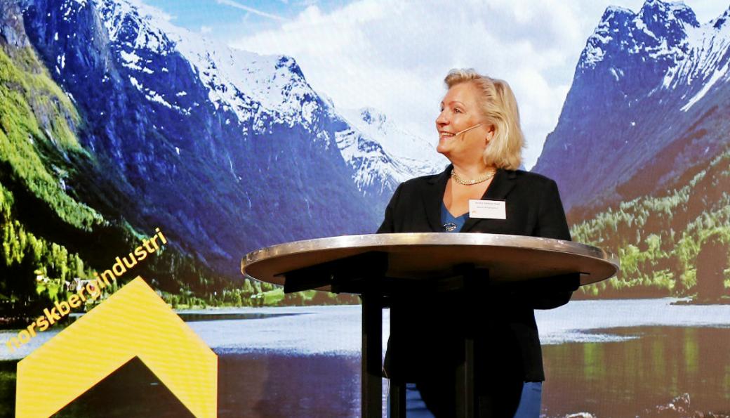 - Å samle flere konferanser vil medføre at flere kan delta på flere av temaene. Vi håper også på større oppmerksomhet rundt bergindustrien ved å ha ett stort og mer synlig arrangement, sier generalsekretær i Norsk Bergindustri, Anita Hall.