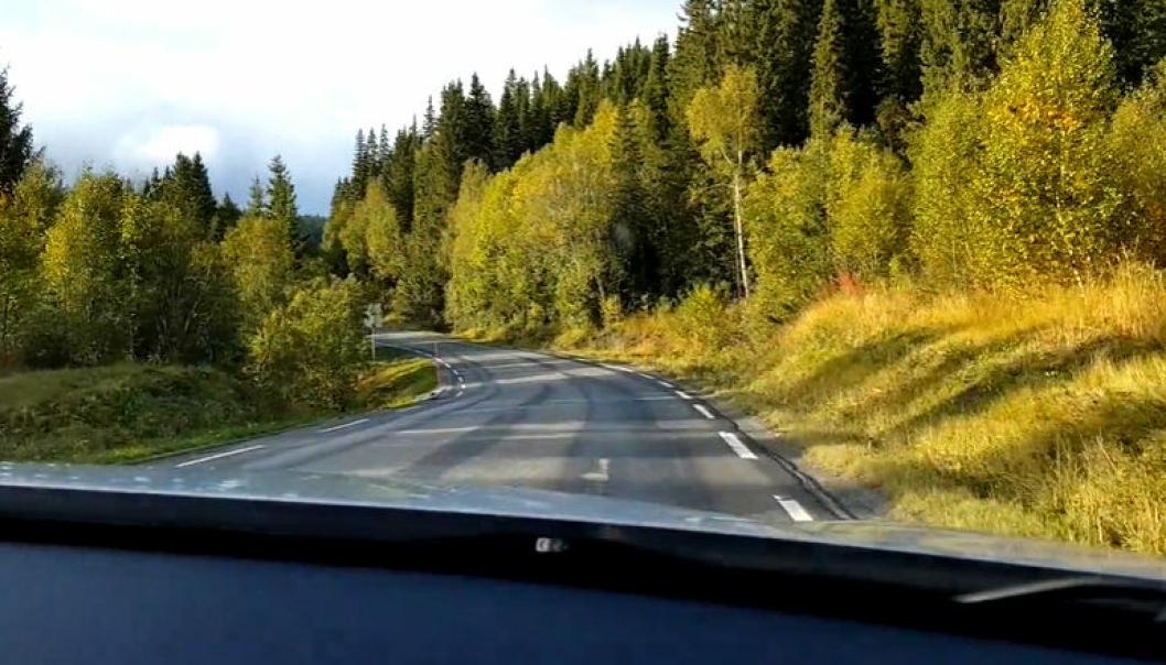 Det skal bygges ny E6 i Grane kommune i Nordland. E6 er ulykkesbelastet her i dag. Se video nederst i saken.