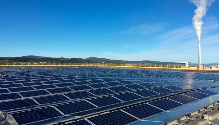 Solcelle-paneler på taket på ett av Askos lageranlegg.