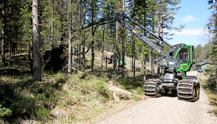 Her er en av maskinene, JD 1070G, i gang med tynning nær svenskegrensa fra i sommer. Nå er det forbudt å krysse denne grensa