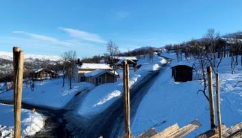 HYTTER: Hyttebygging i Norge er i vinden som aldri før, mye på grunn av covid-19. Her fra toppen i Uvdal alpinanlegg. Foto: Klaus Eriksen