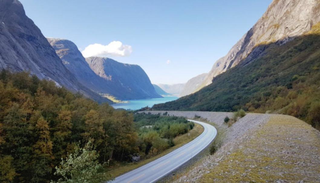 Statens vegvesen lyser ut én ny, stor veikontrakt for riksveiene i Sunnfjord, og deler av Sogn og Nordfjord. Dette gjelder deler av E39, riksvei 5 og riksvei 13. Bilde fra riksvei 5, ved Kjøsnesfjorden.