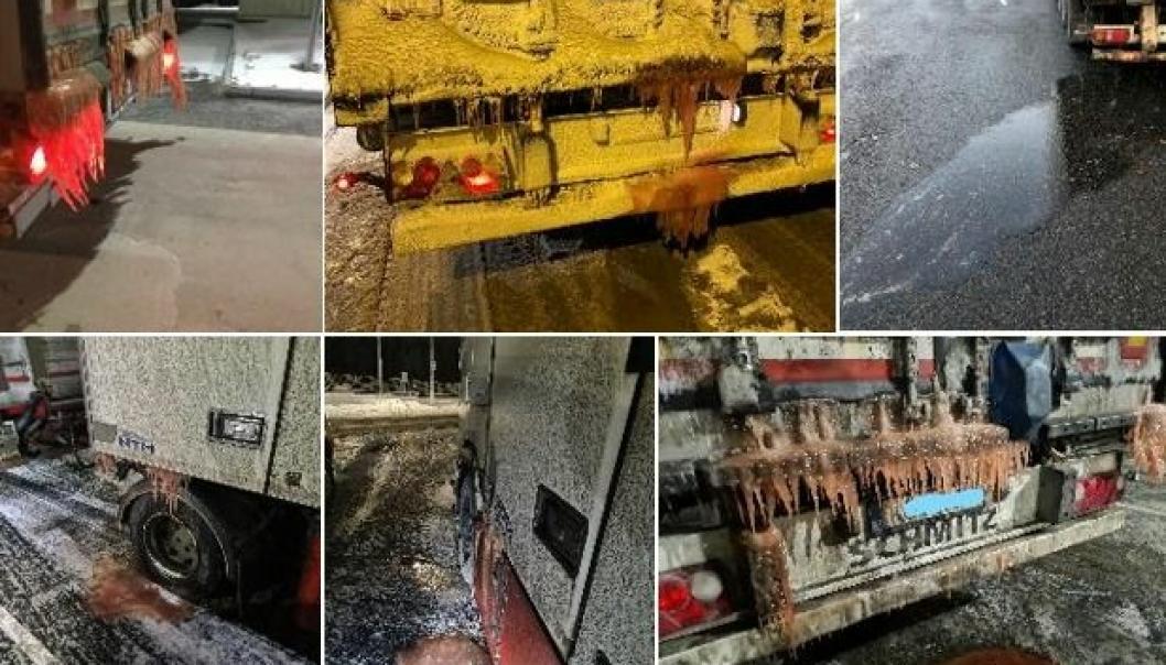 Noen eksempler på fisketransporter med rennende last. Bildene er tatt av Statens vegvesens kontrollører.