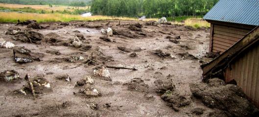 Cowi: - Slik påvirker klimaendringer ras- og skredfare
