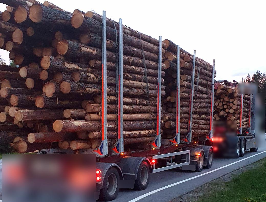 Dette tømmervogntoget var lastet altfor tungt, og sjåføren kjørte på en annens sjåførkort.