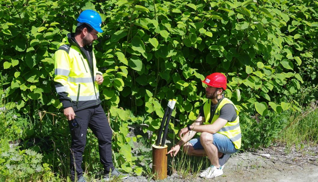 Ved Saksvik Renseanlegg i Malvik kommune har Asplan Viak AS allerede gjort tester av en energibrønn i berg. Prosjektansvarlig Tom André Havnes (t.v.) og prosjektleder Sondre Gjengedal er spente på hvordan energipelene i BEAR-prosjektet vil kunne prestere i forhold til denne. I BEAR-prosjektet vil energipelene bli ca. 25 m dype og det vil ikke bruke kollektorslanger slik som vist på bildet.