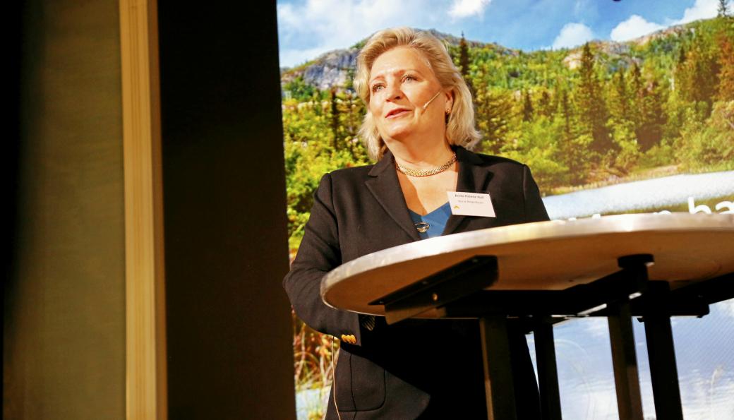 Generalsekretær i Norsk Bergindustri, Anita Hall, har mye positivt å si om den nye regjeringsplattformen.